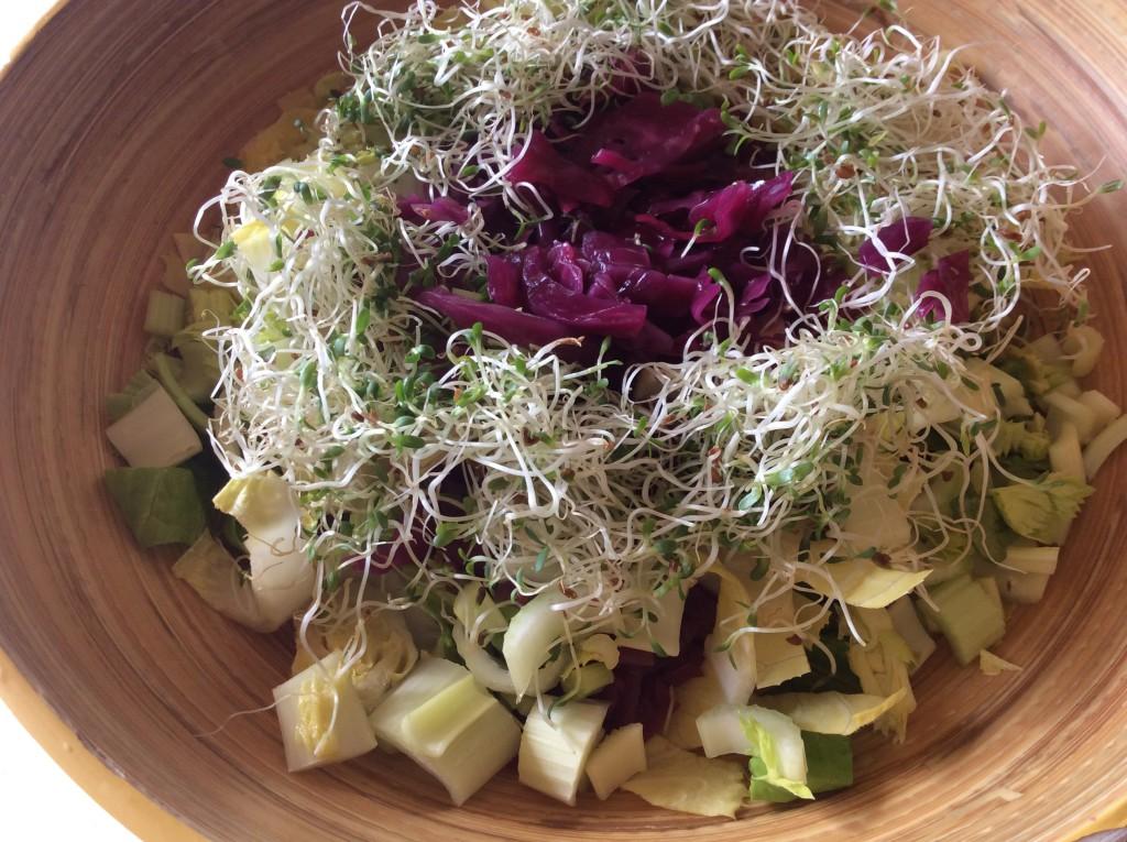 Salade & ferment3